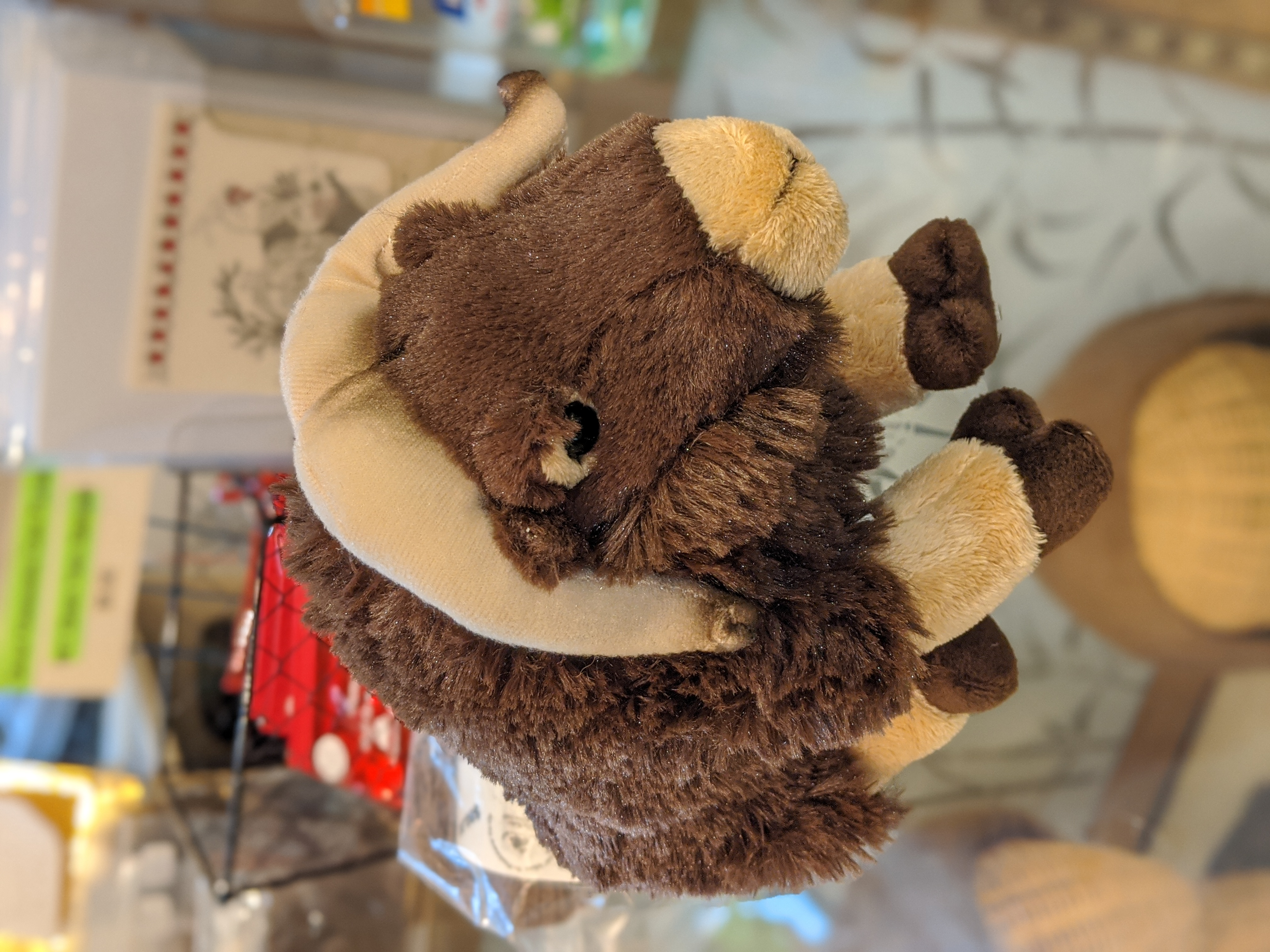 Stuffed Musk Ox (click to enlarge)